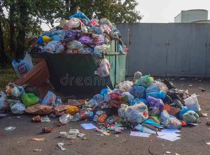 Different types of Dumpsters for waste removal