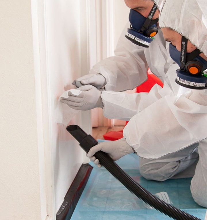 What is the asbestos survey? Some uses of it mentioned